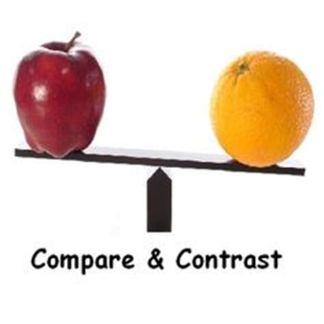 Compare and Contrast Essay Examples AcademicHelpnet